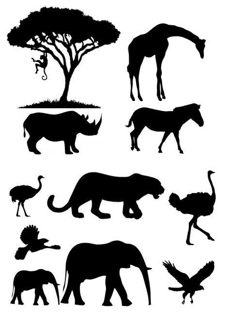 African Animal Silhouette Pictures